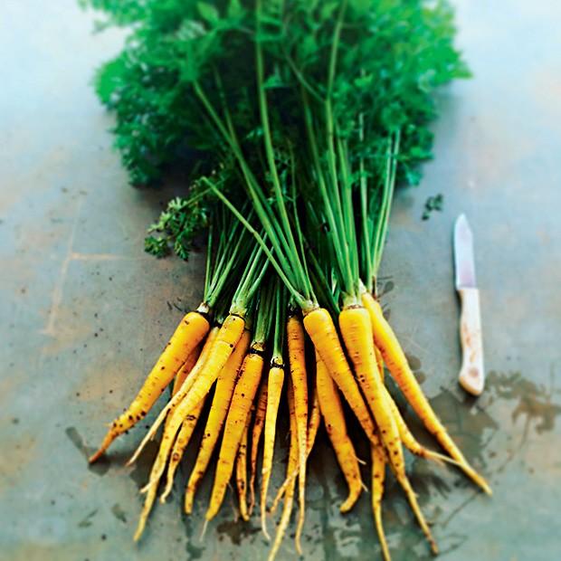 Horta orgânica da Fazenda Santa Adelaide, no interior de São Paulo, investe no plantio de espécies raras ou que estejam fora do mercado, como a cenoura amarela (Foto: Divulgação)
