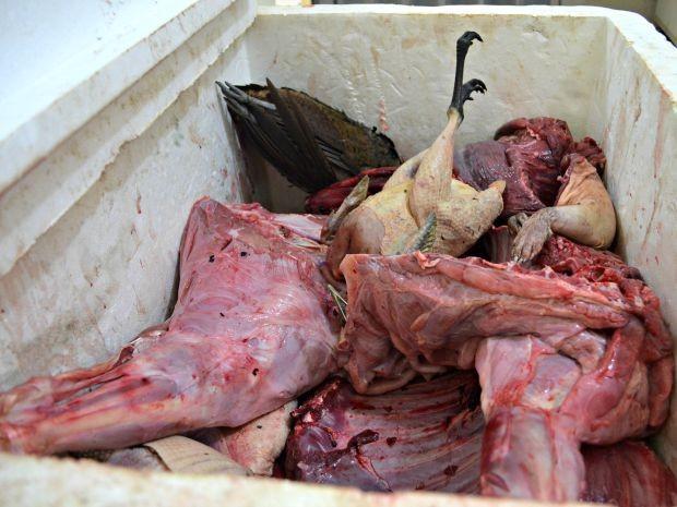 Carne de caça foi apreendida durante operação do Exército (Foto: Aline Nascimento/G1)