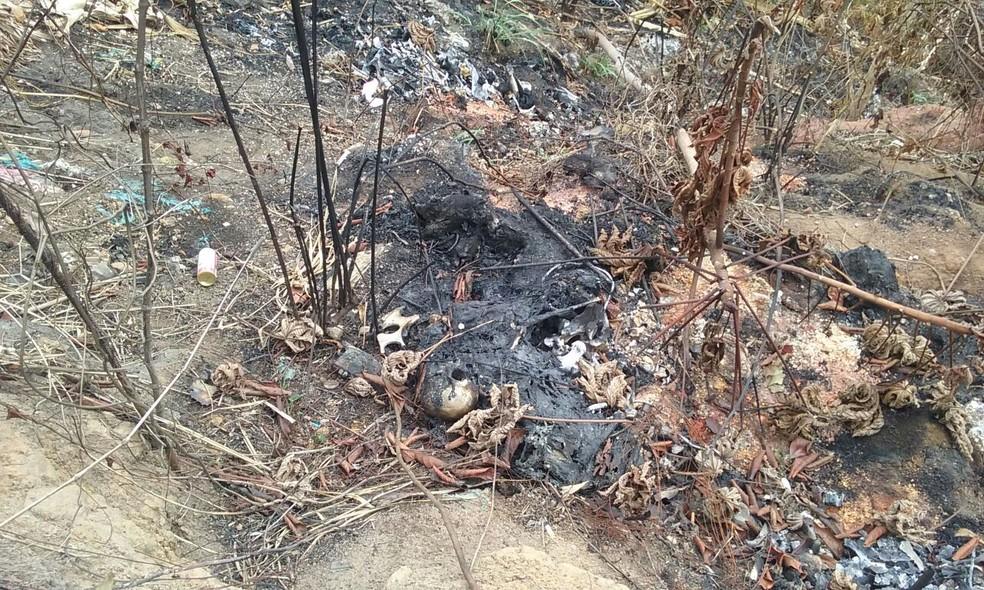 Corpo carbonizado está em avançado estado de decomposição (Foto: Aldo Carneiro/Pernambuco Press)
