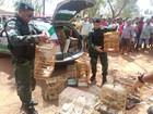 BPA apreende 140 aves silvestres em feiras livres de Maceió e Coruripe