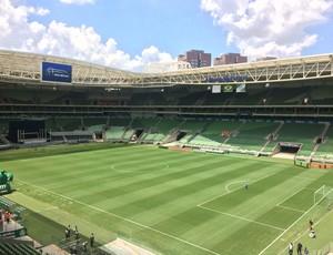 Palmeiras Ponte Preta Amistoso (Foto: Felipe Zito)