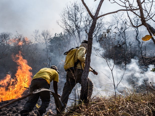 Brigadistas combatem incêndio em Chapada dos Guimarães (Foto: Mayke Toscano/GCOM-MT)