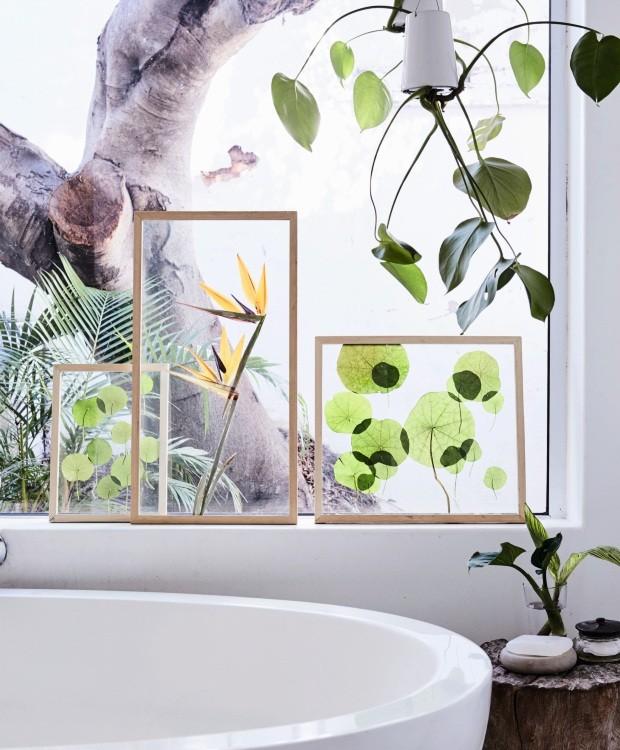 Nos quadros foram usados folhas de capuchinha e flor de estrelítzia. (Foto: Warren Heath / Bureaux.Co.Za)