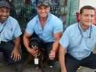 Cadelas de rua são adotadas e viram 'frentistas' em postos de combustíveis