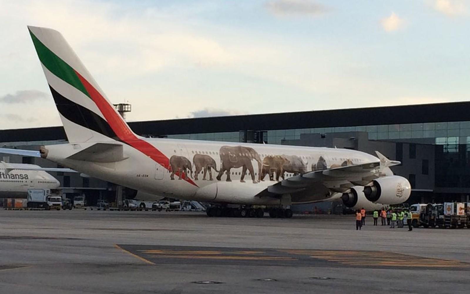 [Brasil] A380, maior avião comercial do mundo, aterrissa em Guarulhos e recebe 'batismo'; veja vídeo A380
