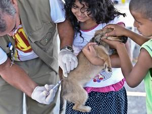 Crianças levam cachorro para receber vacina contra raiva no DF (Foto: Fabio Rodrigues Pozzebom / ABr)