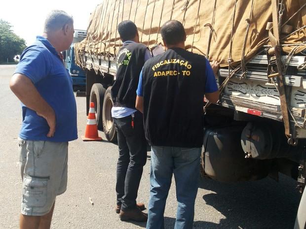 Operação apreende mudas de frutas cítricas, sementes e agrotóxicos sendo transportado irregularmente (Foto: Divulgação/Adapec)
