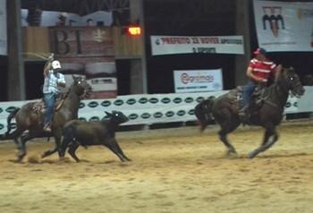 Mais de 120 cavaleiros competem na primeira prova de laço, em Vilhena (Foto: Jonatas Boni)