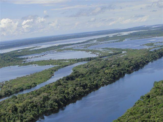 Vista aérea do arquipélago de Anavilhanas, no Rio Negro