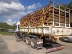 Empresa é multada por transporte irregular de madeira em Barbacena