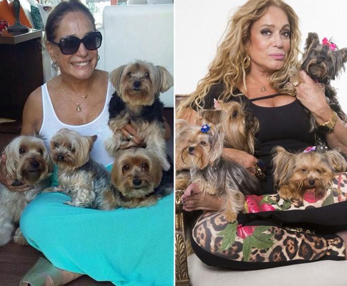 À esquerda, Susana com seus cachorrinhos de estimação; à direita, com os pets de cena (Foto: Arquivo pessoal / Beto Roma / Globo)