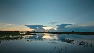 Pantanal (Foto: Rede Globo)