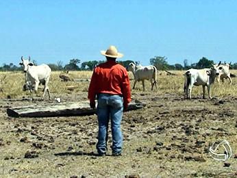 Produtores rurais são notificados a deixar terra indígena (Foto: Reprodução/ TVCA)