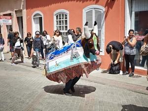 Boi de mamão será um das atrações nesta semana em Florianópolis (Foto: Michele Monteiro/Divulgação)
