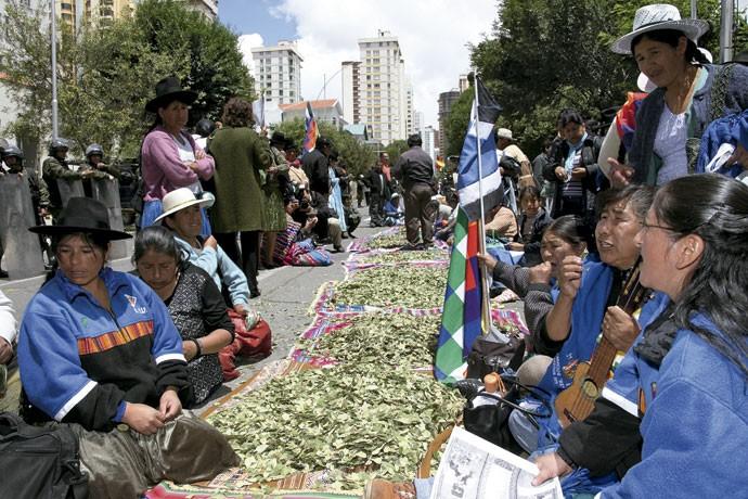Abra a felicidade: na Bolívia, representantes dos aimarás defendem o direito de mascar folhas de coca. No Reino Unido, a liberação da droga poderia reduzir o consumo em 50% e economizar até US$ 6,8 bilhões na repressão (Foto: James Brunker/CON/Getty Images)