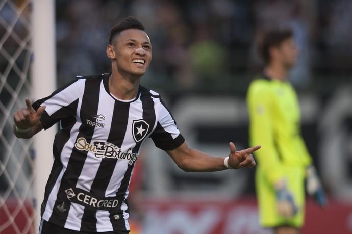Neílton Botafogo Fluminense (Foto: Ag Estado)