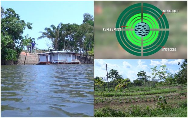Confira os destaques do Amazônia Rural de domingo (6) (Foto: Amazônia Rural)