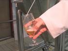 Cervejarias do Vale do Itajaí projetam investir R$ 12 milhões no setor
