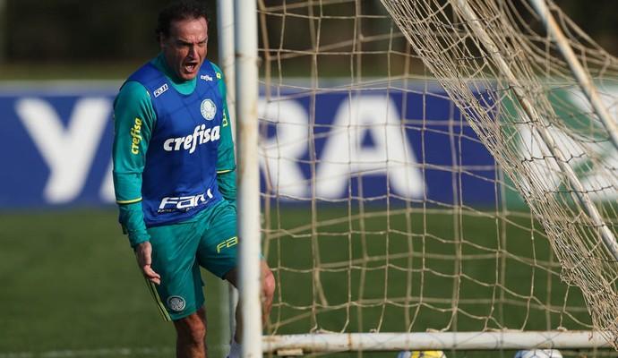 Cuca comemora Chapecó (Foto: Cesar Greco/Ag.Palmeiras/Divulgação)