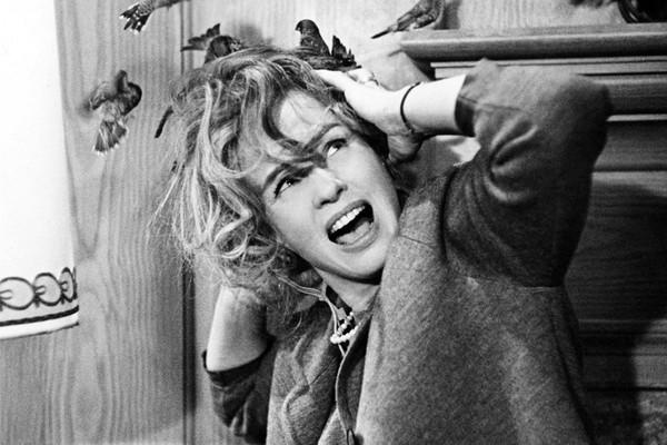 Cena de 'Os Pássaros', de 1963 (Foto: Divulgação)