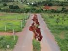 Erosões gigantescas expulsam de casa moradores de Goiás