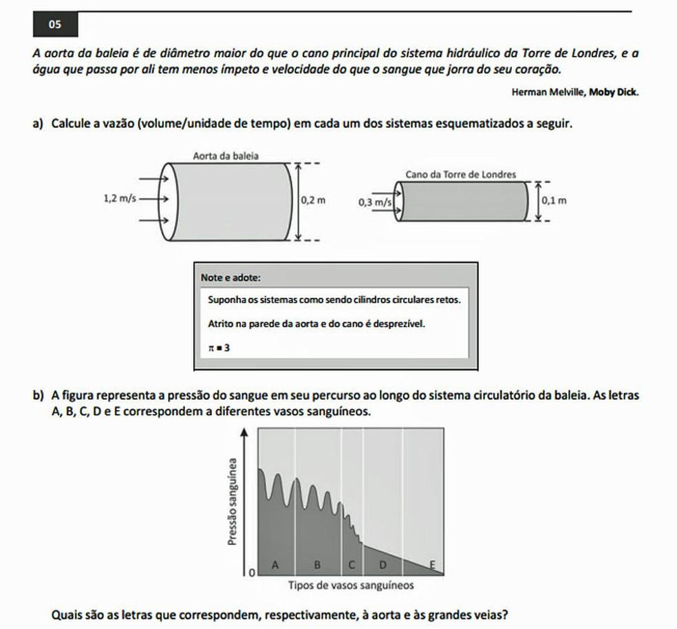 Questão 5 da prova de conhecimentos gerais da segunda fase da Fuvest 2017 (Foto: Reprodução/Fuvest)