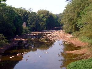 Rio Atibaia, em Campinas, com vazão baixa devido ao perído de estiagem (Foto: Reprodução EPTV)