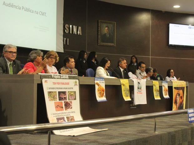 Audiência na Câmara discute maus tratos a animais em vaquejadas no Piauí (Foto: Catarina Costa/G1)