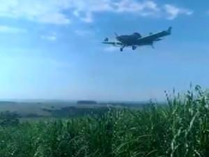 Plane spraying pesticides on plantation in Porto Ferreira (photo: reproduction/EPTV)