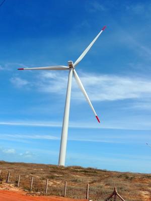 Ventos fortes e constantes atraem investidores no RN (Foto: Felipe Gibson/G1)