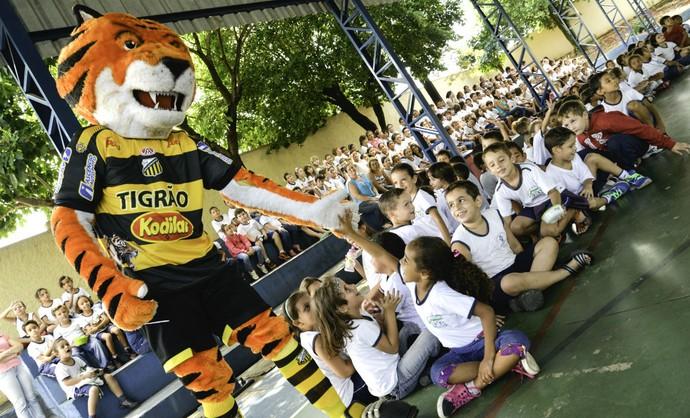 Tigre, mascote, Novorizontino, escola (Foto: David Olímpio / GR Novorizontino)