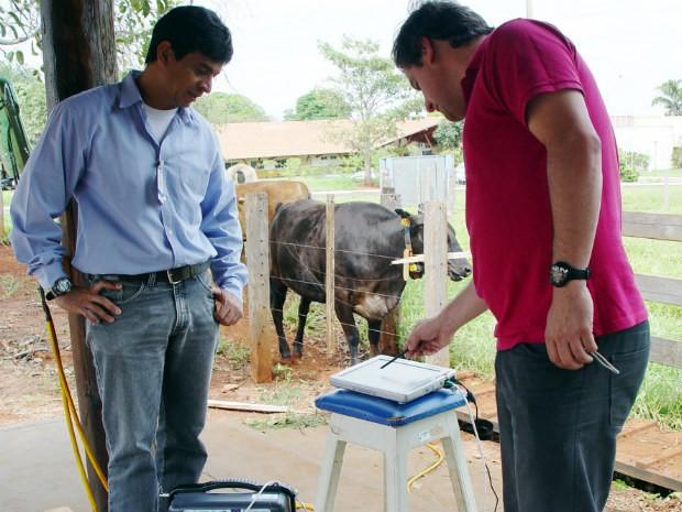 Mangueiro digital será lançado na Dinapec em Campo Grande (Foto: Embrapa Gado de Corte/Dalízia Aguiar)