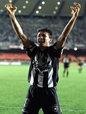 Sinval Botafogo Conmebol 1993 (Foto: Júlio César Guimarães / O Globo)