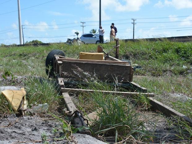 Carroça foi abandonada às margens da rodovia e animal foi levado por dono (Foto: Walter Paparazzo/G1)