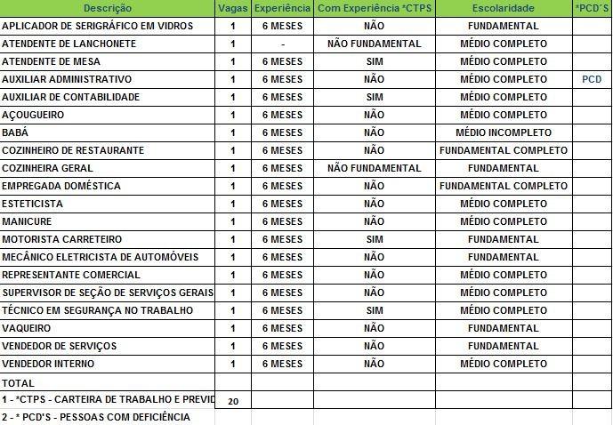 Sine oferece 20 vagas de emprego nesta terça-feira (13) (Foto: Divulgação/Sine)