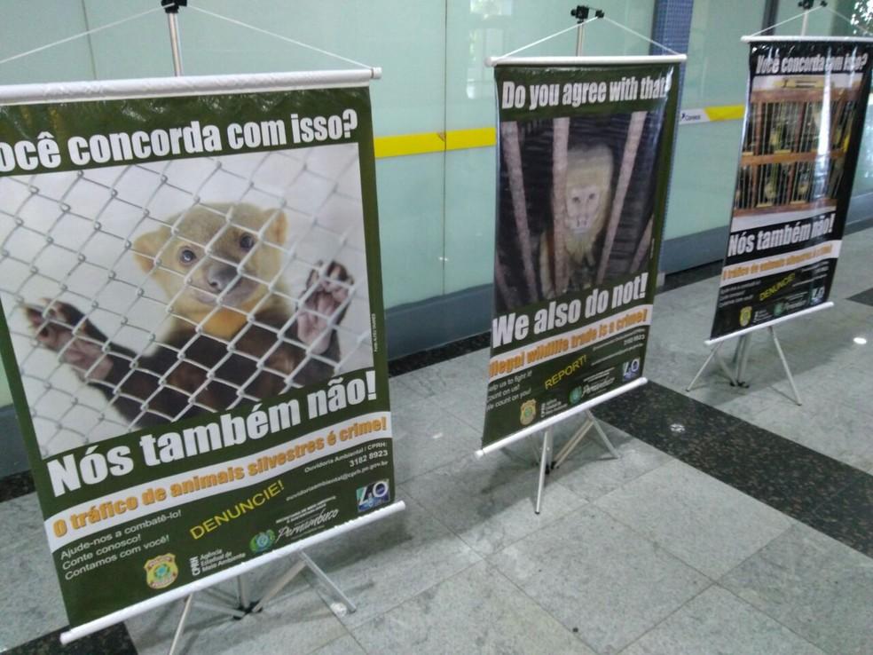Cartazes foram colocados no Aeroporto do Recife (Foto: Ascom/CPRH)