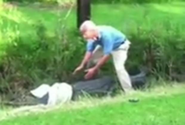 Biólogo escapou por pouco de um ataque do aligátor. (Foto: Reprodução)