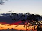 Céu deve ficar parcialmente nublado no Cone Sul de RO nesta sexta, 22
