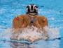 Phelps se aproxima da 26ª medalha, e Thiago Pereira também avança à final