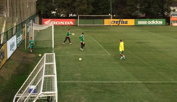 Fernando Prass Vagner Palmeiras (Foto: Felipe Zito)