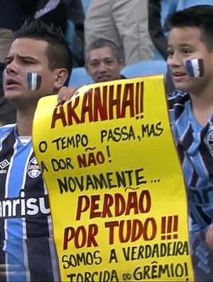 Cartaz para Aranha - Grêmio x Ponte Preta (Foto: Reprodução SporTV)