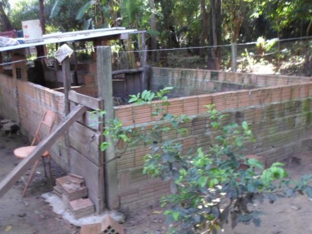 Criadouro de porcos foi fechado pela PMA (Foto: Divulgação/ PMA)