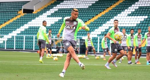 galo duro (Luiz Henrique/FFC)