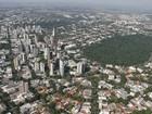Prefeitura de Maringá desiste de cortar árvores da Mata Atlântica