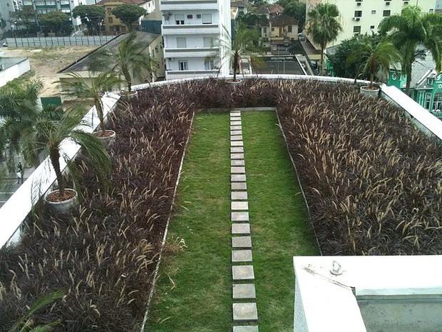 Telhado verde em prédio de Santos (Foto: Divulgação/Instituto Cidade Jardim)