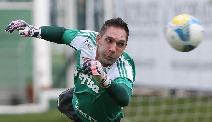 Fernando Prass Palmeiras Treino (Foto: Cesar Greco/Ag Palmeiras/Divulgação)