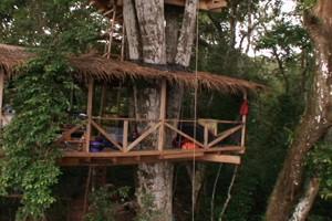 Florestas Bloco 1 (Foto: Rede Globo)