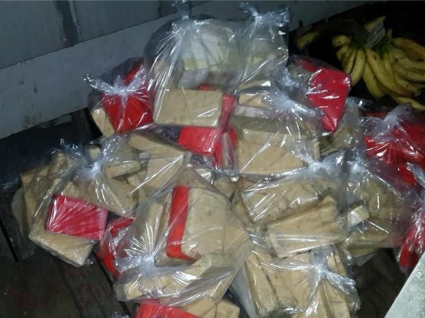 Droga estava escondia em sacos de peixes congelados (Foto: Polícia Federal/Divulgação)
