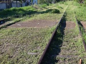 Ferrovia que passar por Presidente Prudente está totalmente desativada (Foto: Stephanie Fonseca/G1)