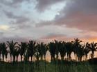 Tempo fica instável e deve chover neste sábado, 21, em Rondônia